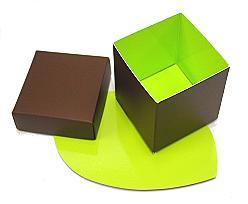 Cubebox appr. 1000gr Duo Bali brown-lime