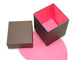 Cubebox appr.500 gr. Duo Hollywood taupe-pink