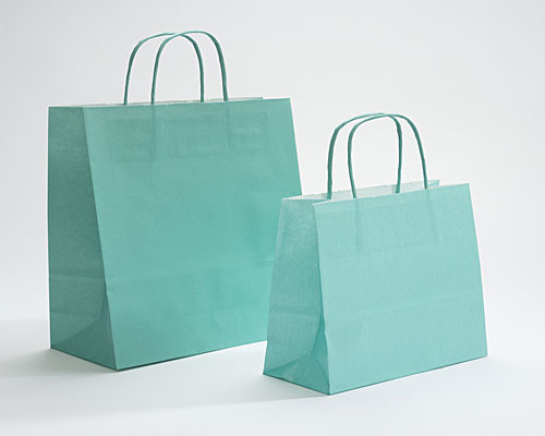 Paper bag curled handle L180xW80xH220mm green