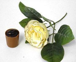 roos met goudrand