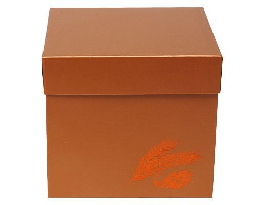 Cubebox Autumn figures 1000 gr. hazelnut