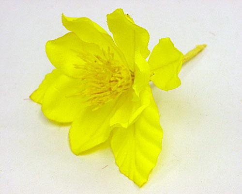 Zomeranemoon yellow