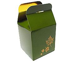 Cubebox 100x100x100mm Autumn design  Vert foret laque