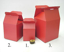 Cubebox handle middle 100x100x100mm red with goldcarton