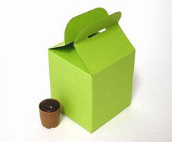 Cubebox handle small 75x75x75mm green with goldcarton