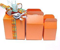 Cubebox handle small 75x75x75mm orange with goldcarton