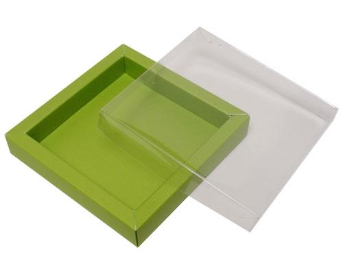 Windowbox 100x100x19mm kiwi green