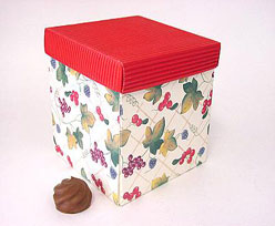 kubus fruit  rood deksel