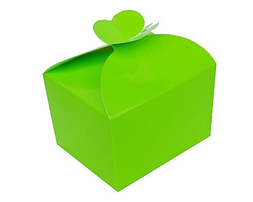 Box 500 gr Butterfly vert pomme laque